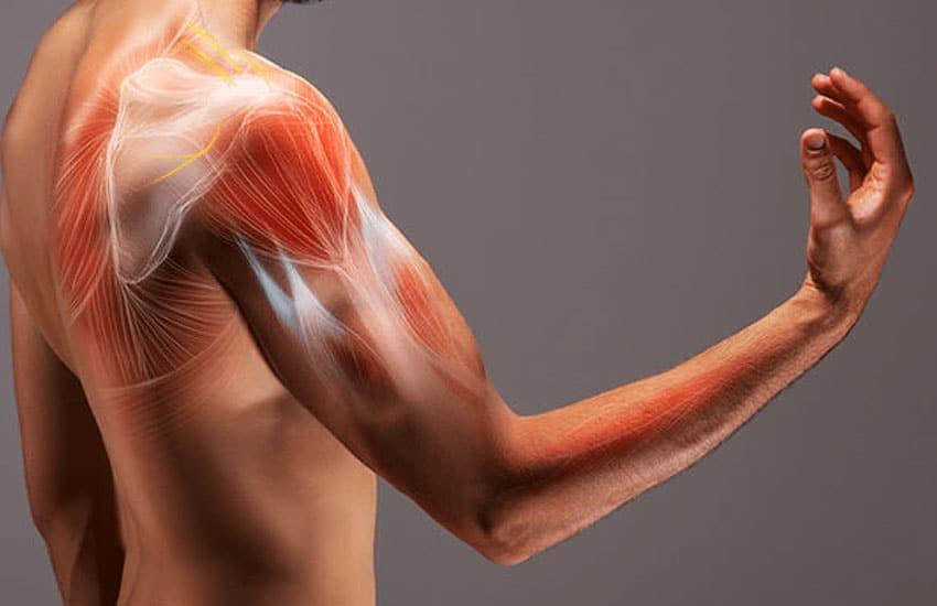 fysiotherapie-leebrug-specialisaties-Dry-Needling